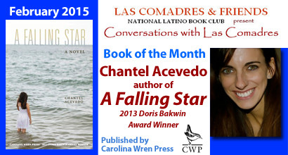 A Falling Star: February 2015 Book of the Month